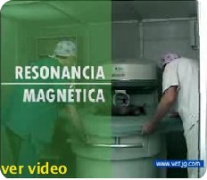 video resonancia magnetica veterinaria